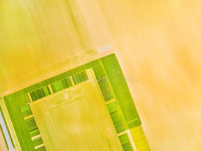 Groene gebieden met geometrisch patroon royalty-vrije stock afbeeldingen