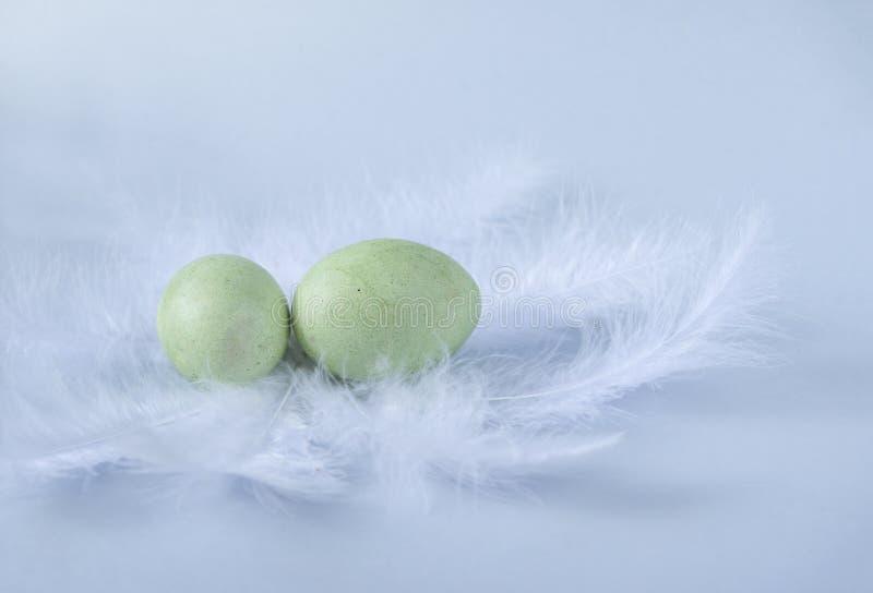 2 groene gekookte paaseieren op witte veren op blauwe achtergrond stock fotografie