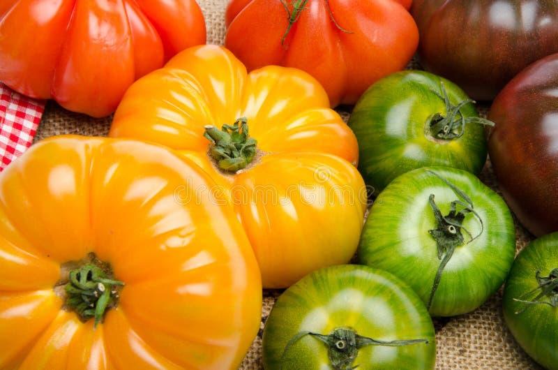 Groene, gele, oranje en purpere tomaten royalty-vrije stock foto