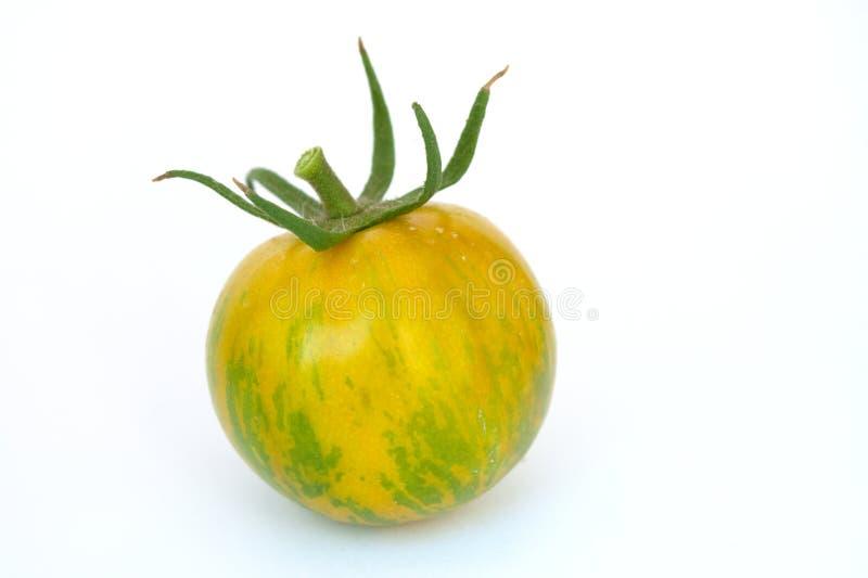 Groene gestreepte tomaat royalty-vrije stock foto
