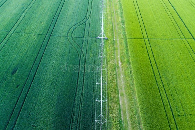 Groene gewassengebieden met irrigatiesysteem royalty-vrije stock foto