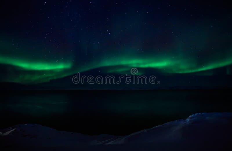 Groene golven van Aurora Borealis met glanzende sterren over de fjord stock foto's