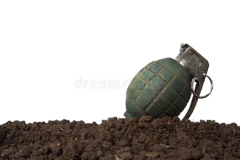 Groene granaat op wit stock afbeelding