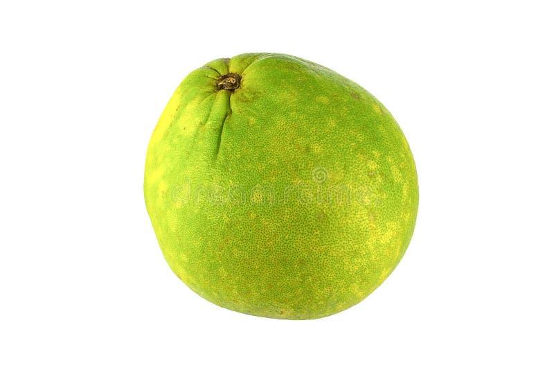 Groene grapefruit royalty-vrije stock foto