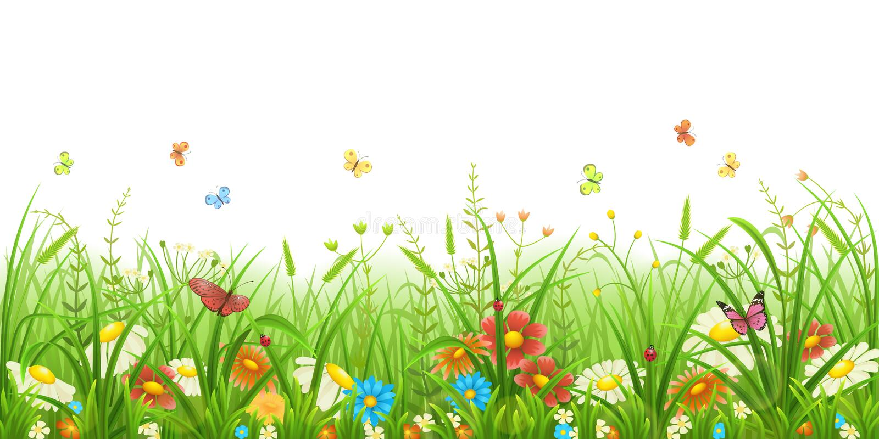 Groene gras en bloemen stock afbeeldingen