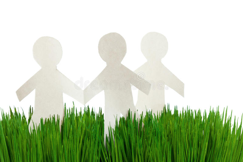 Groene gras en van het Document Kettingdragers stock foto's