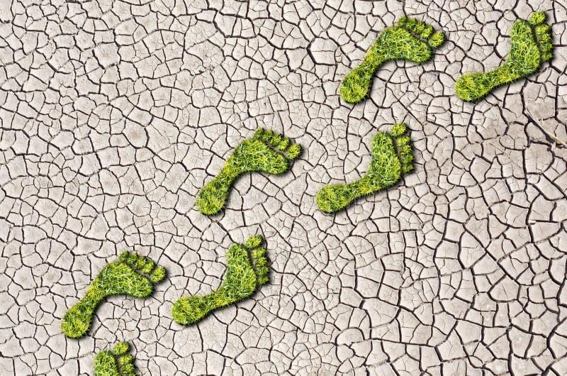 Groene gras groeiende voetafdrukken op gebarsten aardeachtergrond royalty-vrije stock foto