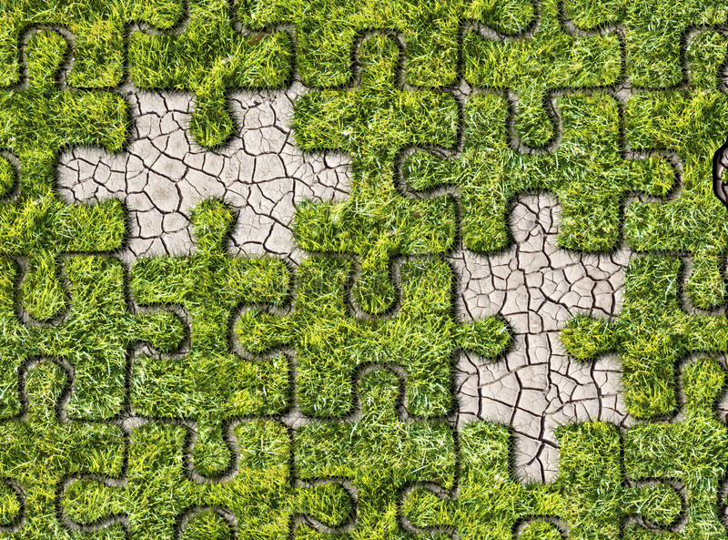 Groene gras groeiende voetafdrukken op witte achtergrond royalty-vrije stock foto
