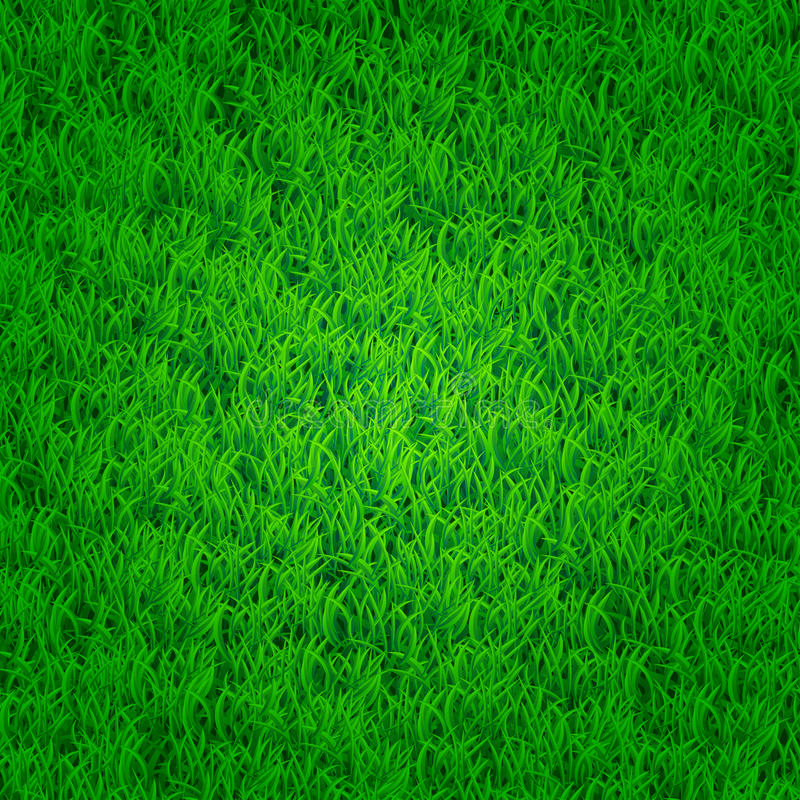 Groene grasachtergrond stock illustratie
