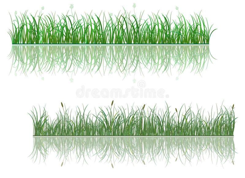 Groene graspatronen stock illustratie