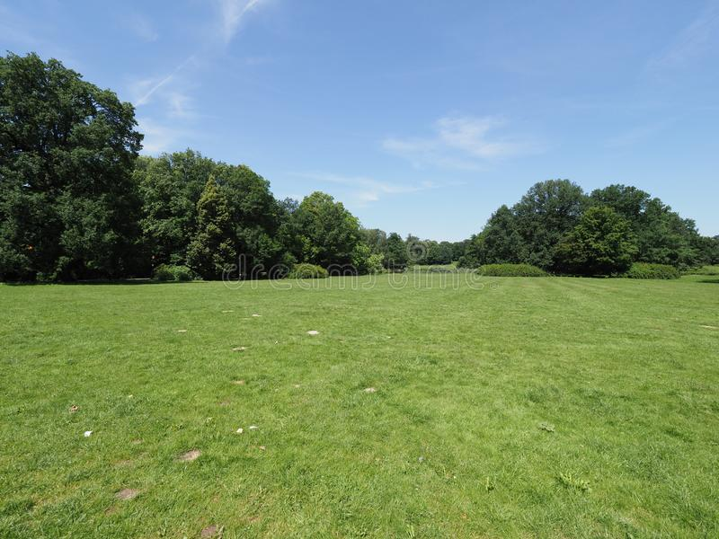 Groene grasrijke gebied en bomen bij parklandschap in Europese Pszczyna-stad in Polen op Juni royalty-vrije stock foto's
