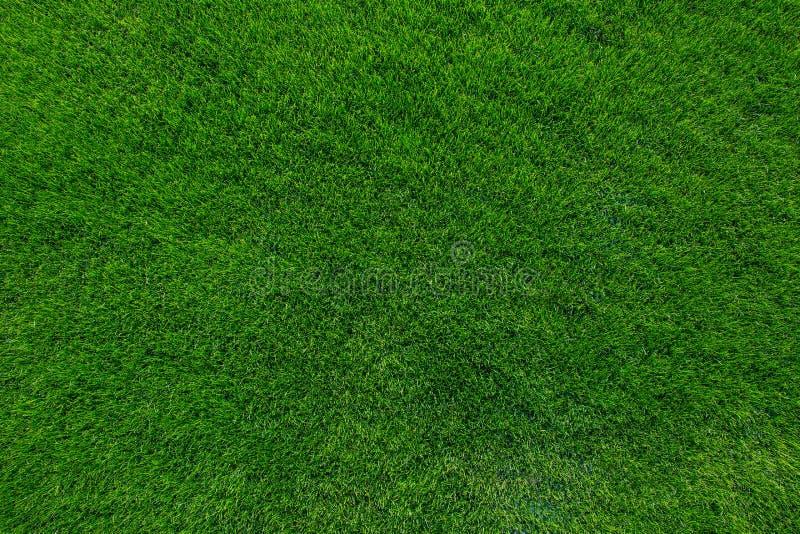 Groene grastextuur als achtergrond royalty-vrije stock afbeelding