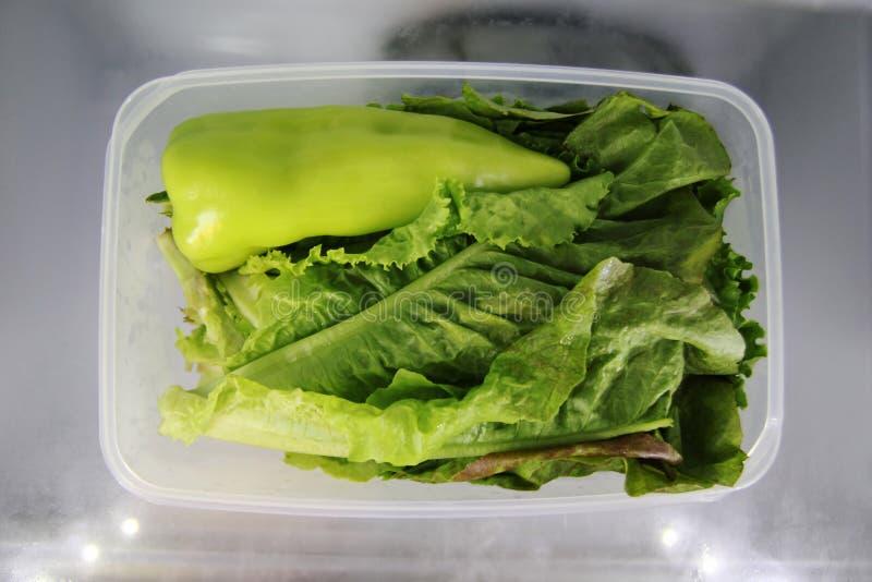Groene groente in de plastic voedselcontainer op een plank van een koelkast royalty-vrije stock foto's