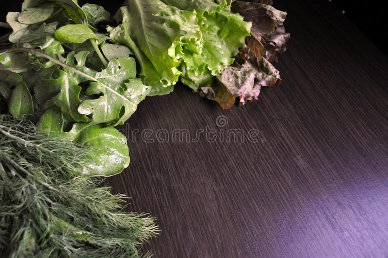 Groene Groenten Reeks diverse seizoengebonden groene groenten royalty-vrije stock foto's