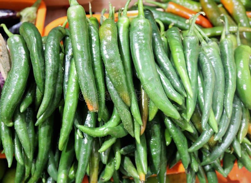 Groene hete Spaanse peperpeper stock foto