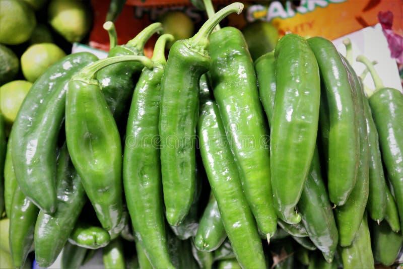 Groene hete Spaanse peperpeper royalty-vrije stock afbeeldingen