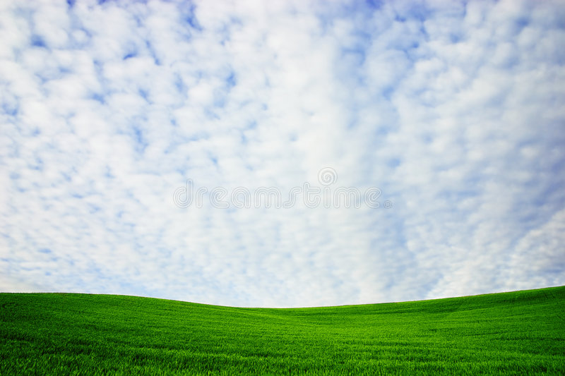Groene heuvel royalty-vrije stock foto