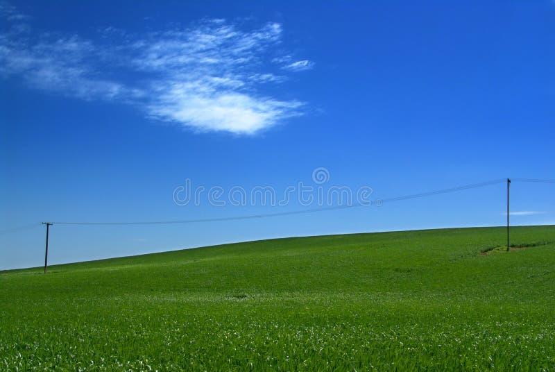 Download Groene Heuvel stock foto. Afbeelding bestaande uit wijngaard - 281748