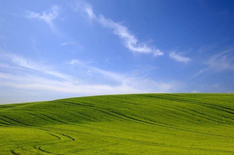 Groene heuvel en blauwe hemel. stock afbeeldingen