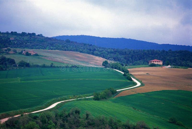 Groene heuvel, landbouwbedrijf en landelijke weg stock afbeelding