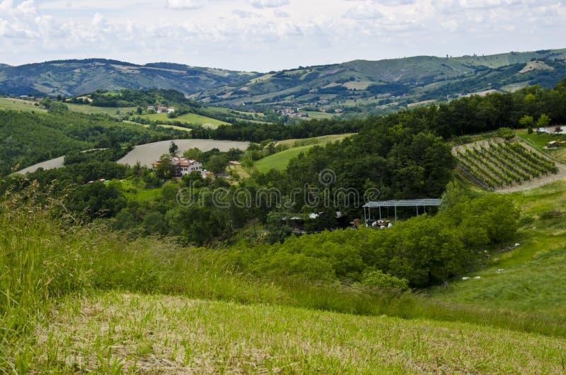 Groene heuvels - Appennini Modenesi royalty-vrije stock fotografie