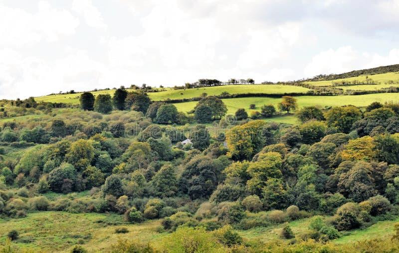 Groene heuvels dichtbij Belfast - Noord-Ierland stock afbeelding
