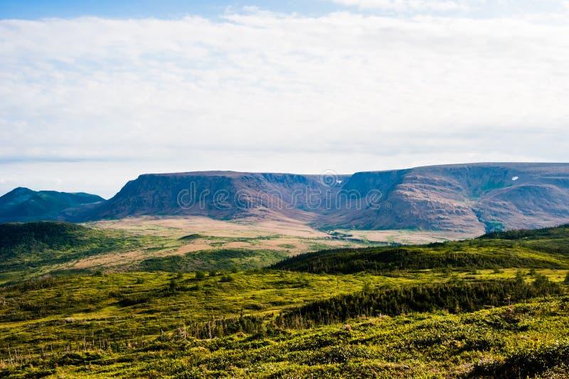 Groene heuvels met bos tegen plateau onder bewolkte hemel stock afbeeldingen