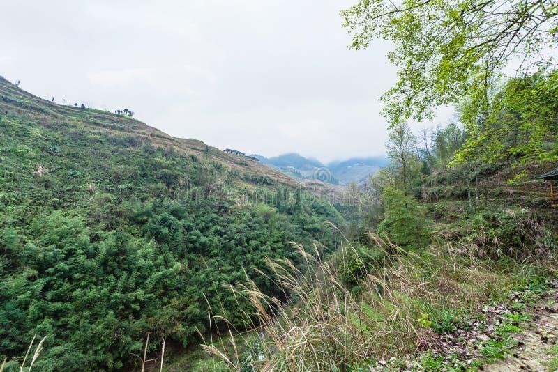 groene heuvels rond Dazhai-dorp royalty-vrije stock afbeelding