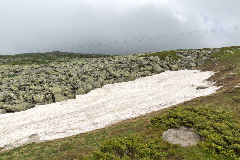 Groene heuvels van Vitosha Berg dichtbij de Piek van Cherni Vrah, Sofia City Region, Bulgarije royalty-vrije stock afbeelding