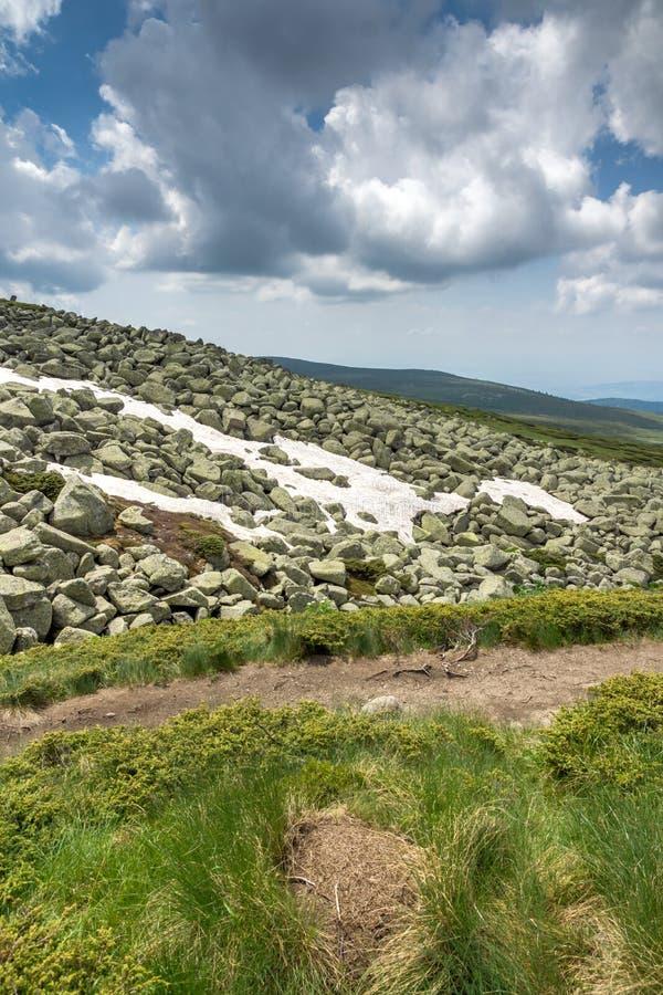 Groene heuvels van Vitosha Berg dichtbij de Piek van Cherni Vrah, Sofia City Region, Bulgarije royalty-vrije stock foto
