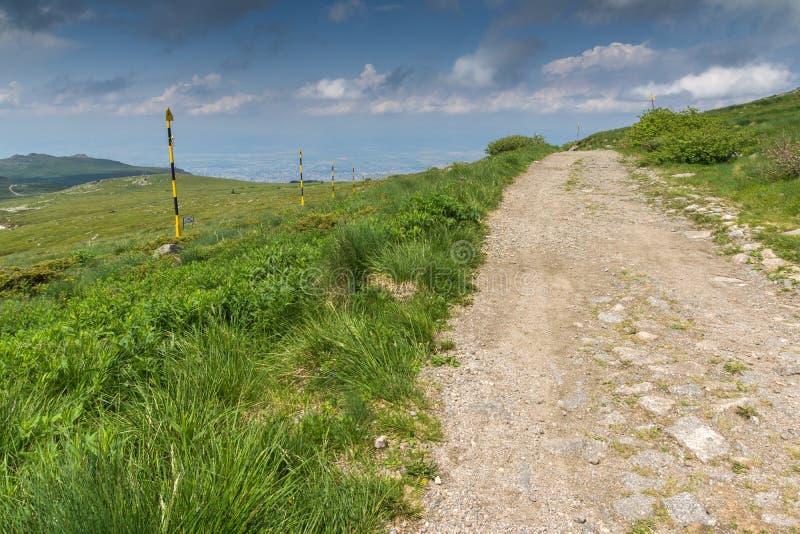 Groene heuvels van Vitosha Berg dichtbij de Piek van Cherni Vrah, Sofia City Region, Bulgarije stock foto