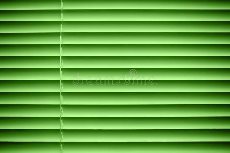 Groene jaloezie stock afbeeldingen
