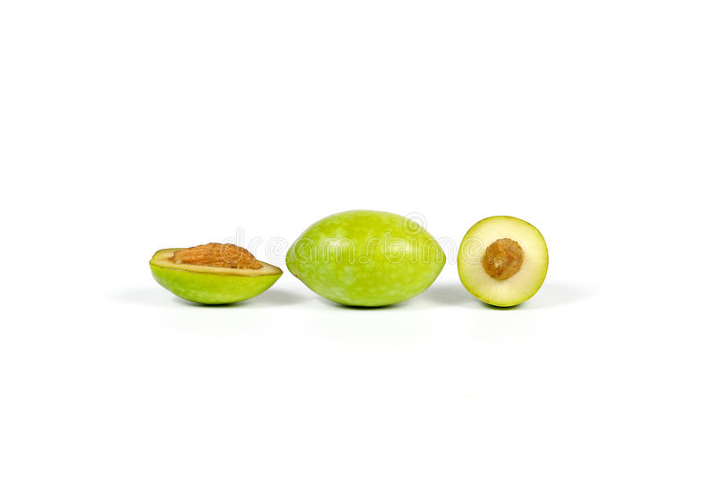 Groene jonge olijf stock foto