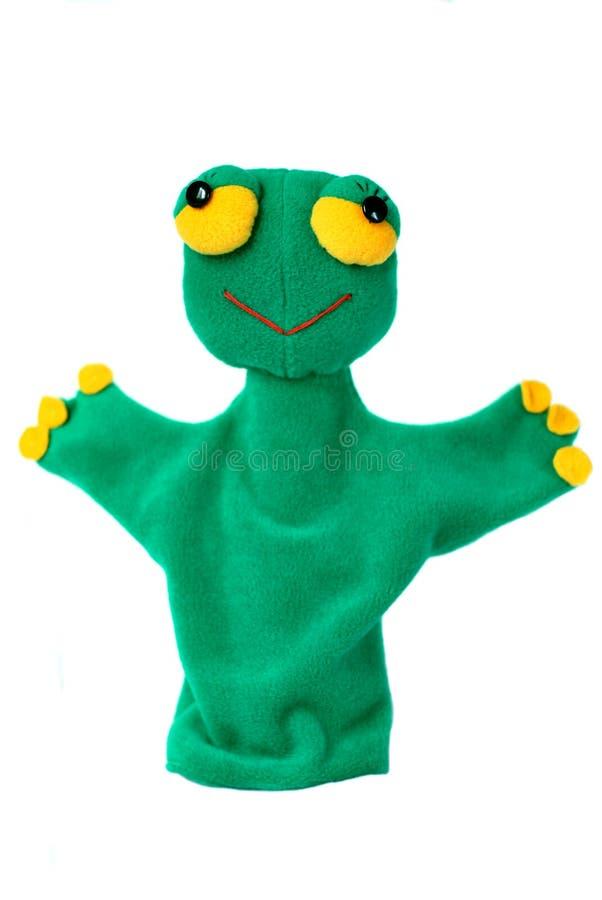 Groene kikkerhandpop stock foto