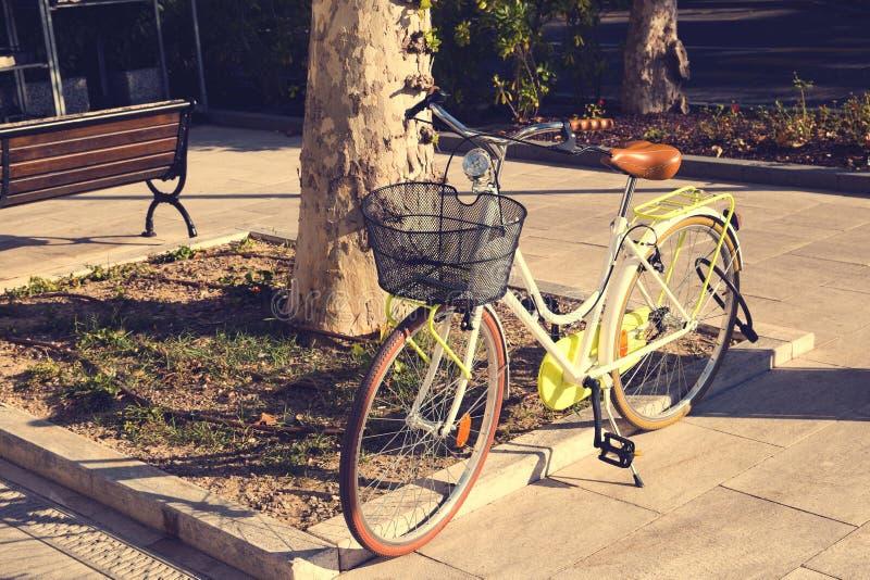 Groene klassieke moderne fiets met mand op de zonsondergang royalty-vrije stock foto's