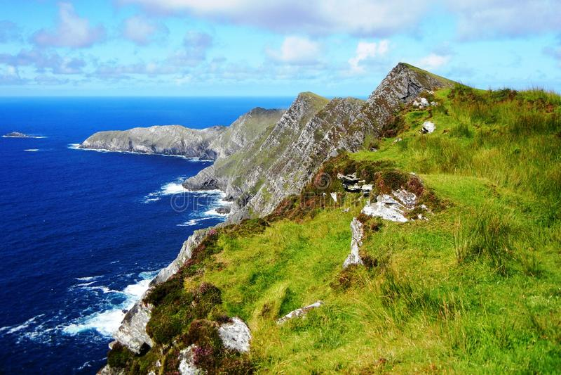 Groene klippen in Ierland royalty-vrije stock fotografie