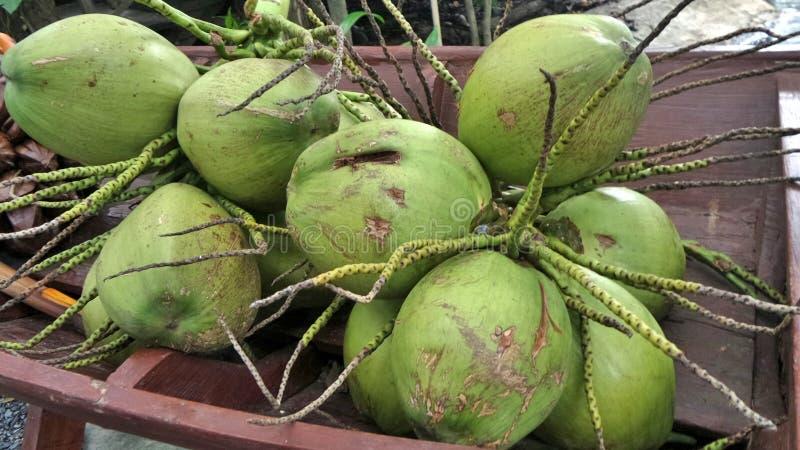 Groene kokosnoot royalty-vrije stock foto
