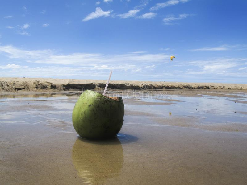 Groene kokosnoot op strand en overzees met blauwe hemel - vakanties royalty-vrije stock foto's
