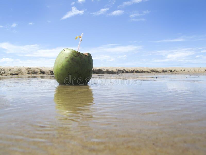 Groene kokosnoot op strand en overzees met blauwe hemel - vakanties royalty-vrije stock afbeeldingen