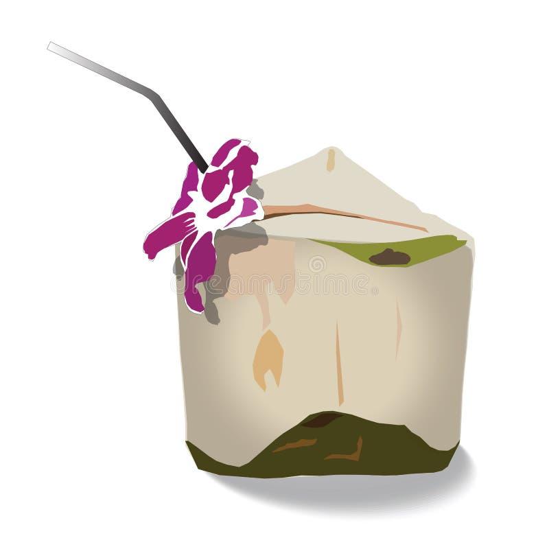 Groene kokosnoten met het drinken stro en orchidee stock illustratie