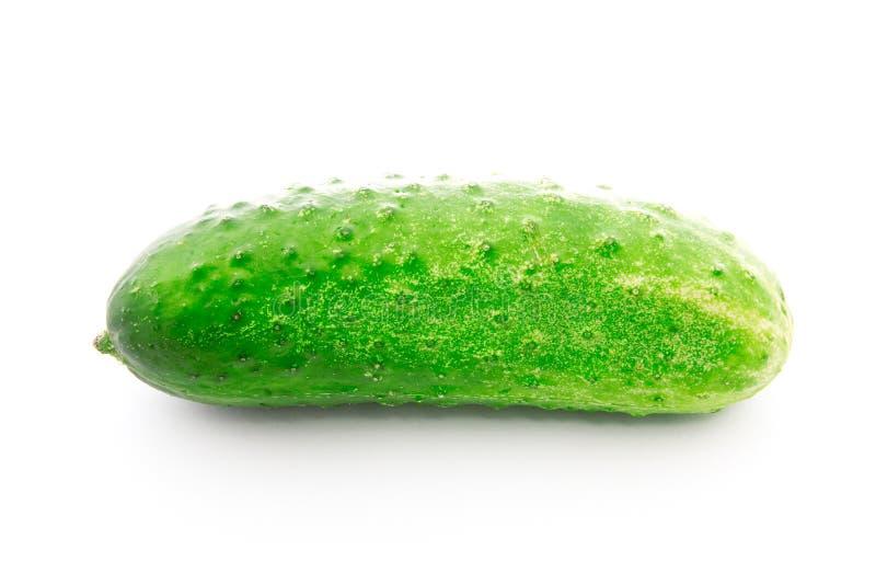 Groene komkommer stock afbeeldingen