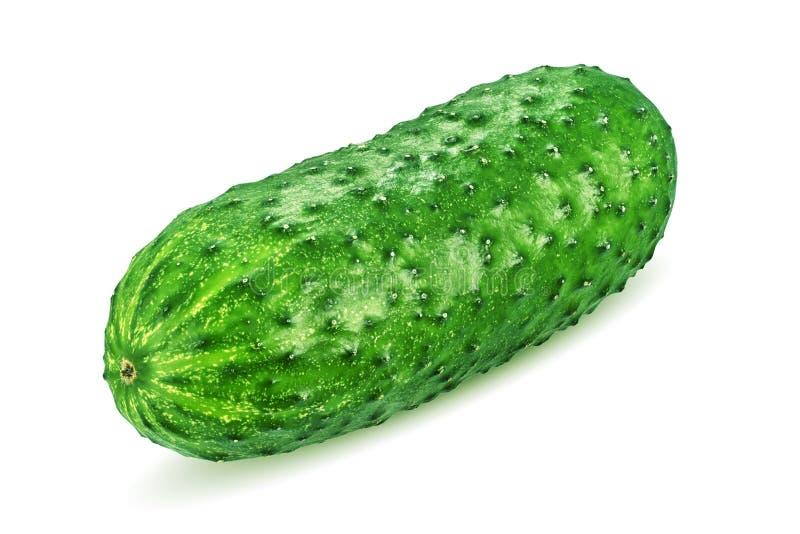 Groene komkommer die op wit wordt ge?soleerdr royalty-vrije stock afbeelding