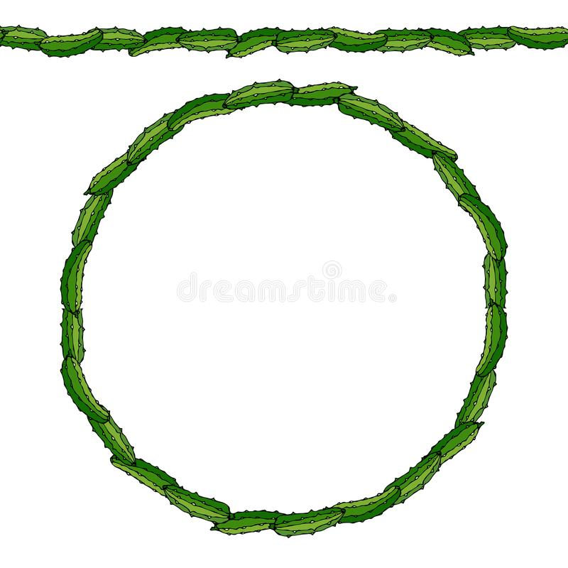 Groene Komkommer of Gerkin Eindeloze patroonborstel, ronde slinger Kroon of Cirkelkader Verse Rijpe Plantaardige Salade Gezonde v vector illustratie