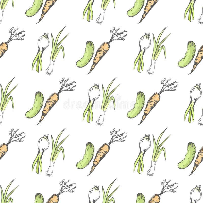 Groene Komkommer, Gezonde Wortel en Kruidige Prei vector illustratie