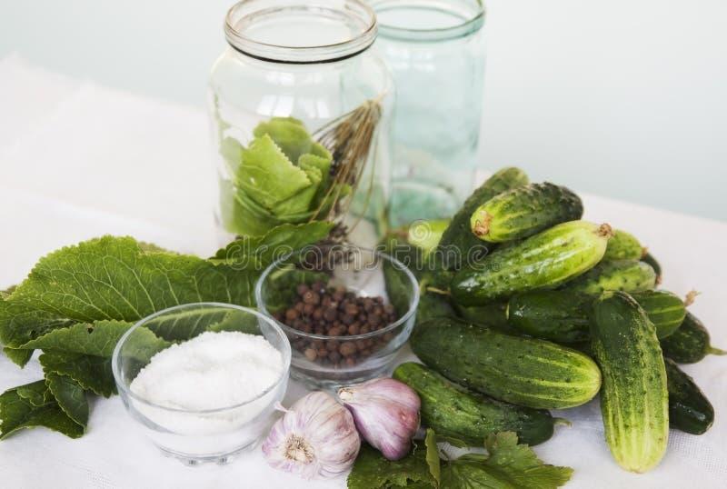 Groene komkommers royalty-vrije stock foto