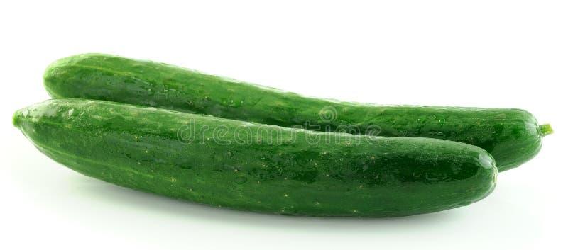 Groene komkommers i op witte achtergrond royalty-vrije stock foto