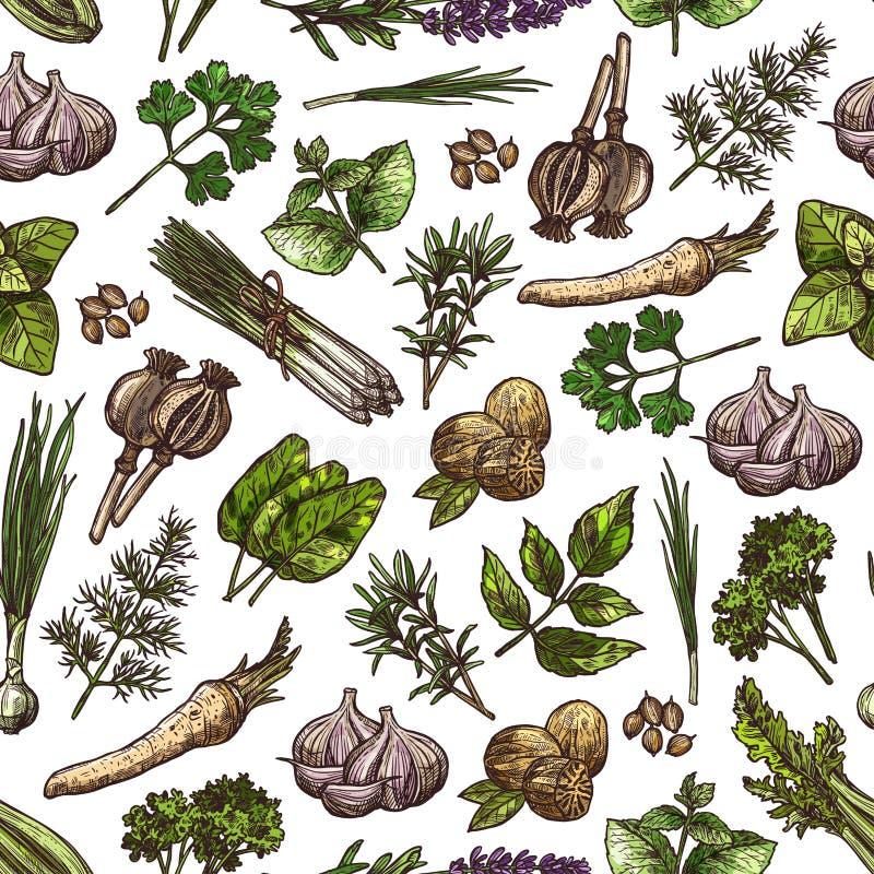 Groene kruiden, kruiden, plantaardig kruidenpatroon stock illustratie