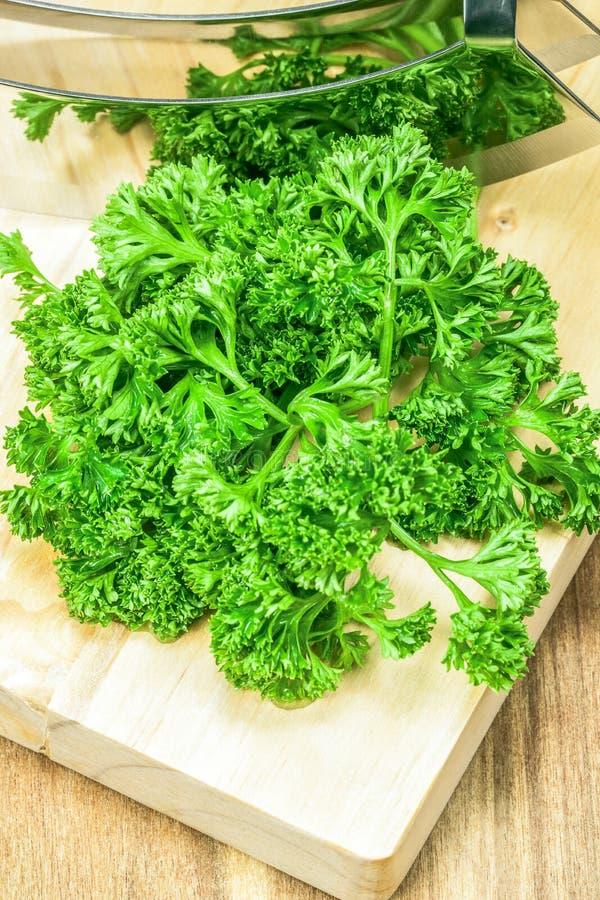 Groene Krullende Peterselie stock afbeelding