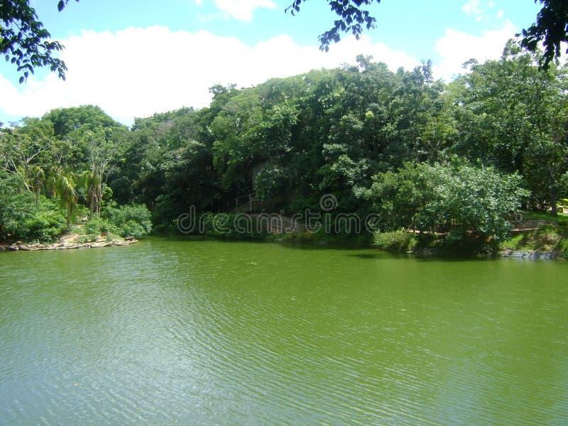 Groene Lagune royalty-vrije stock fotografie