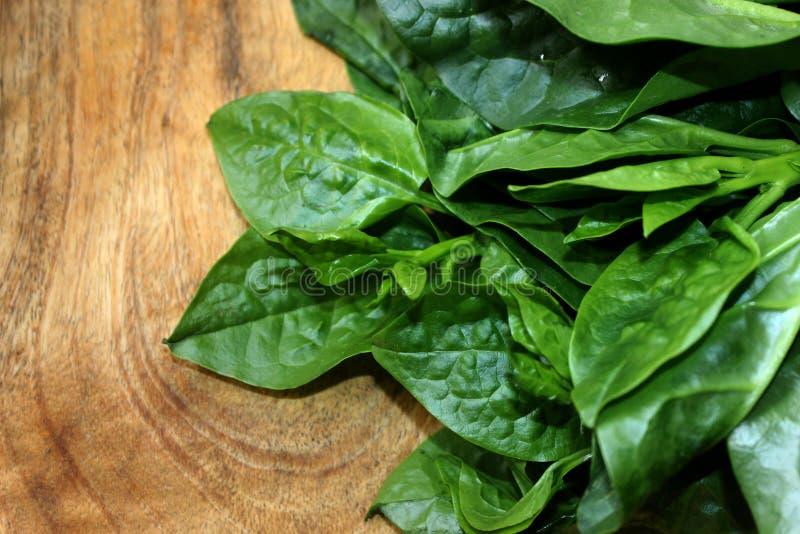 Groene Malabar-spinazie op houten raad stock fotografie